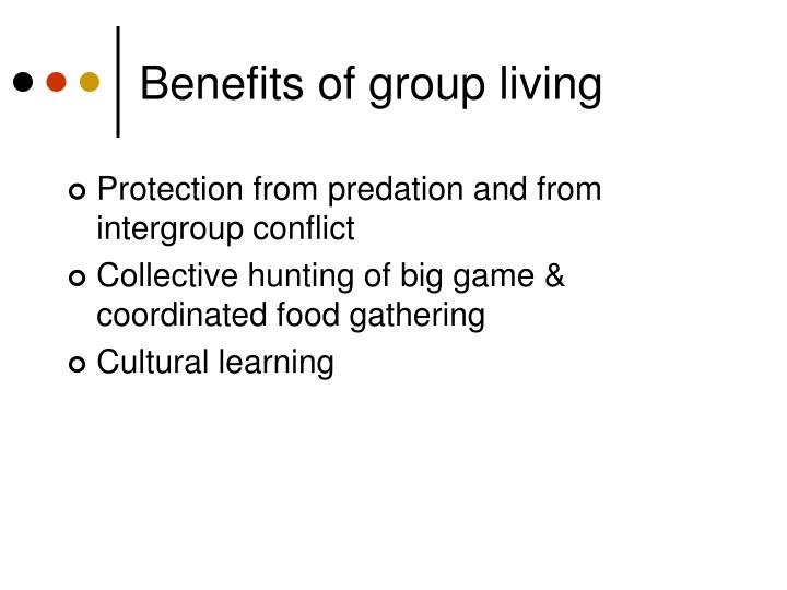 Benefits of group living