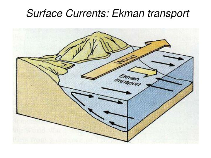 Surface Currents: Ekman transport