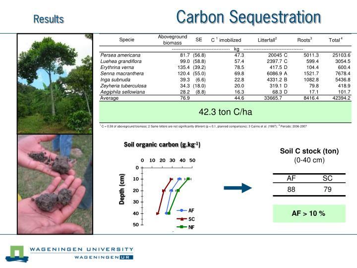 Soil organic carbon (g.kg