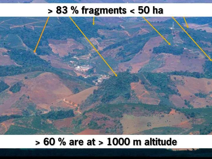 > 83 % fragments < 50 ha