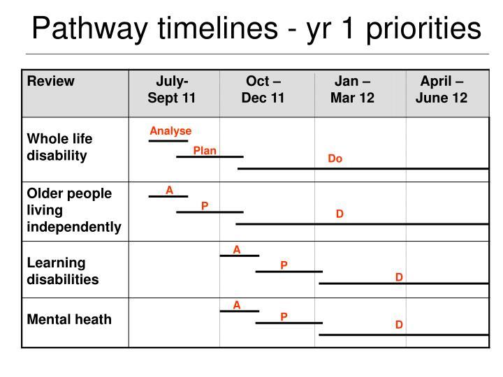 Pathway timelines - yr 1 priorities