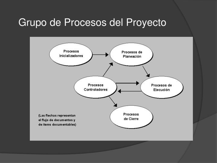 Grupo de Procesos del Proyecto