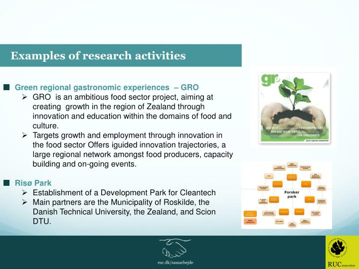 Examples of research activities