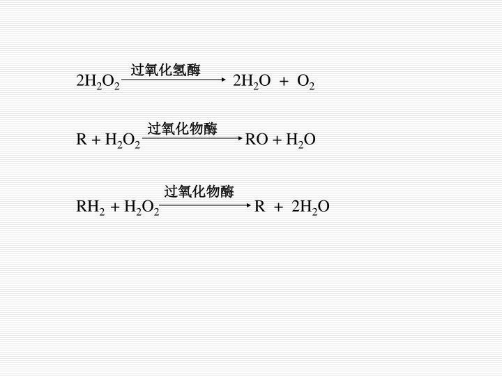 过氧化氢酶