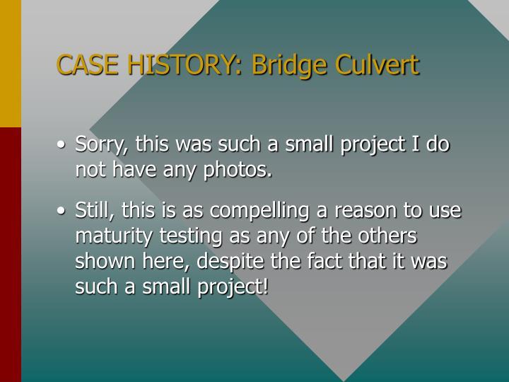 CASE HISTORY: Bridge Culvert