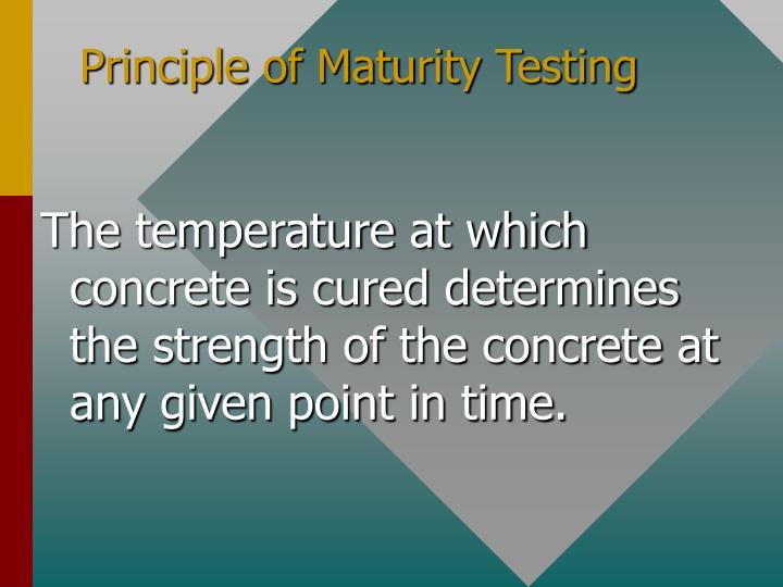 Principle of Maturity Testing