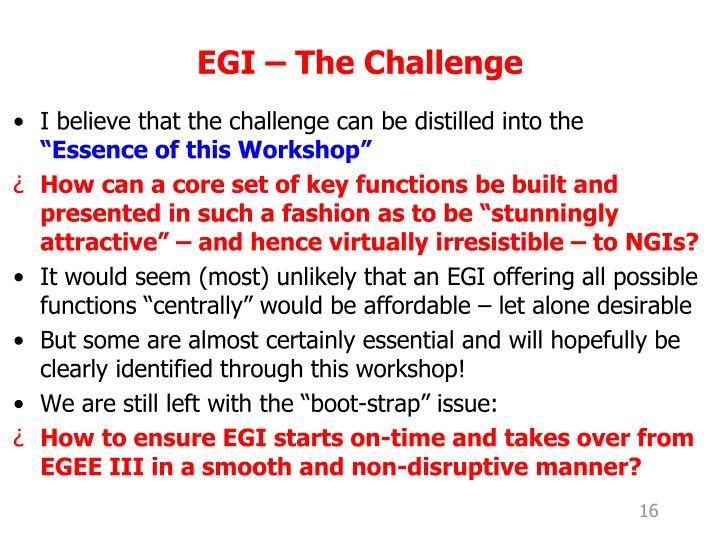 EGI – The Challenge