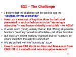 egi the challenge