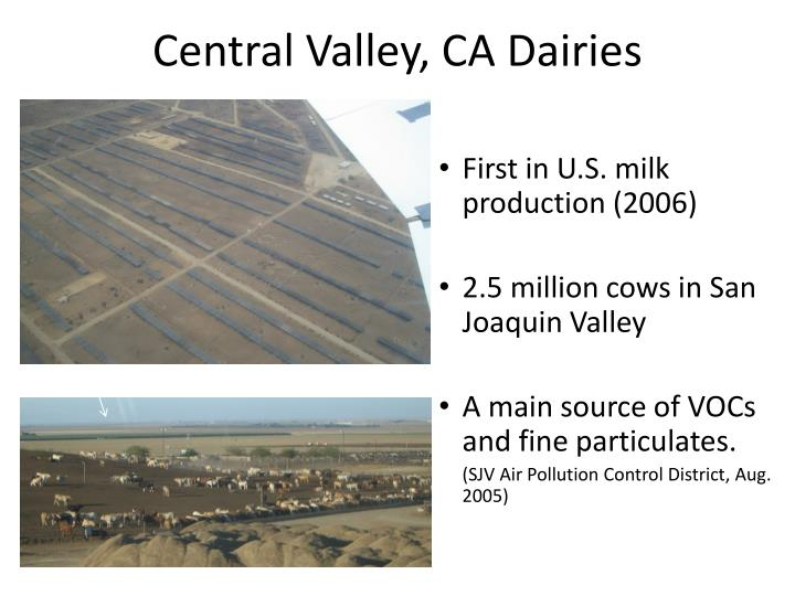 Central Valley, CA Dairies