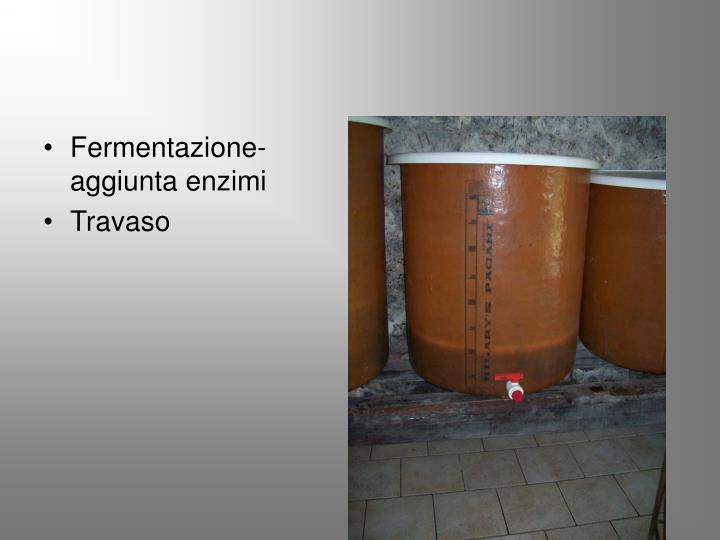Fermentazione-aggiunta enzimi