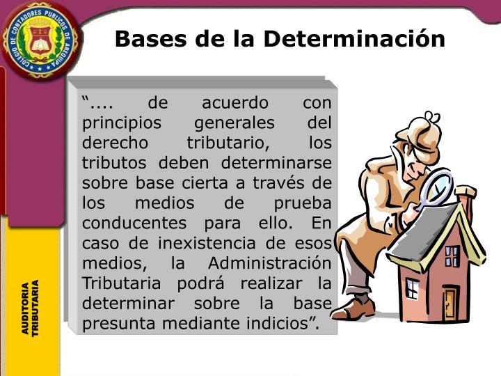 Bases de la Determinación