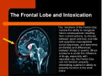 the frontal lobe and intoxication
