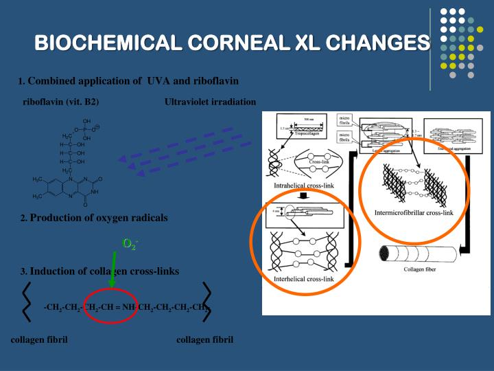 Biochemical corneal xl changes