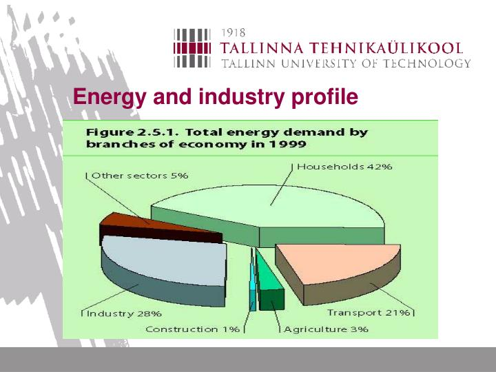 Energy and industry profile