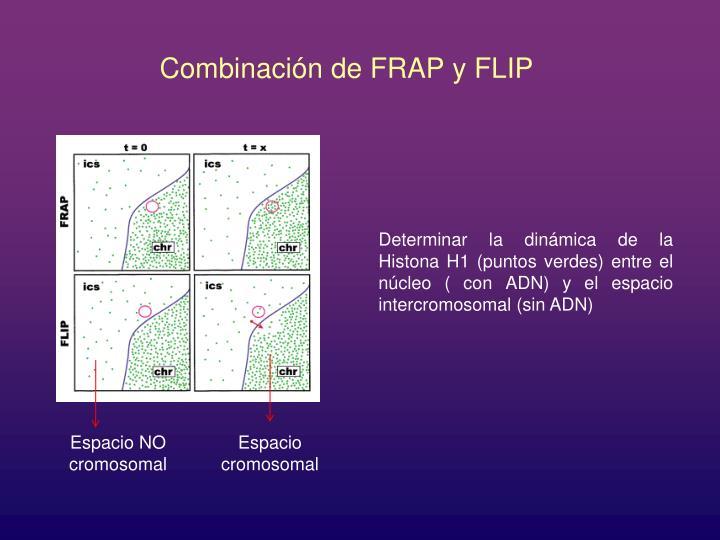 Combinación de FRAP y FLIP