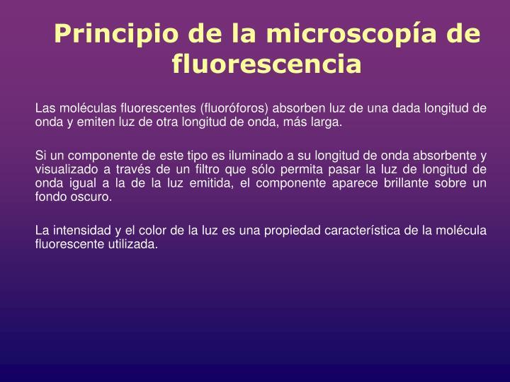 Principio de la microscopía de fluorescencia