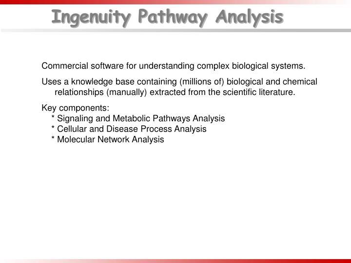 Ingenuity Pathway Analysis