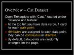 overview cat dataset