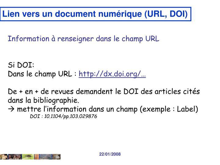Lien vers un document numérique (URL, DOI)