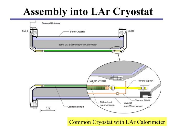 Assembly into LAr Cryostat
