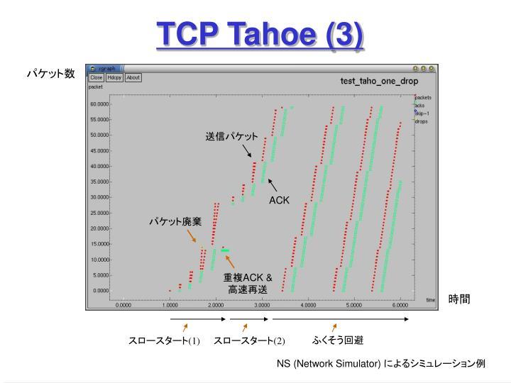 TCP Tahoe (3)