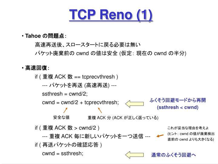 TCP Reno (1)