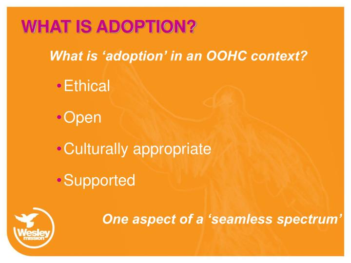 WHAT IS ADOPTION?