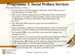 programme 3 social welfare services1