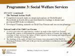 programme 3 social welfare services12