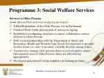 programme 3 social welfare services4