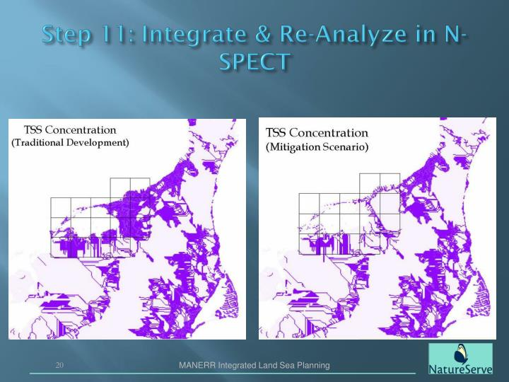 Step 11: Integrate & Re-Analyze in N-SPECT