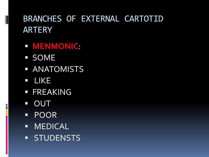 BRANCHES OF EXTERNAL CARTOTID ARTERY