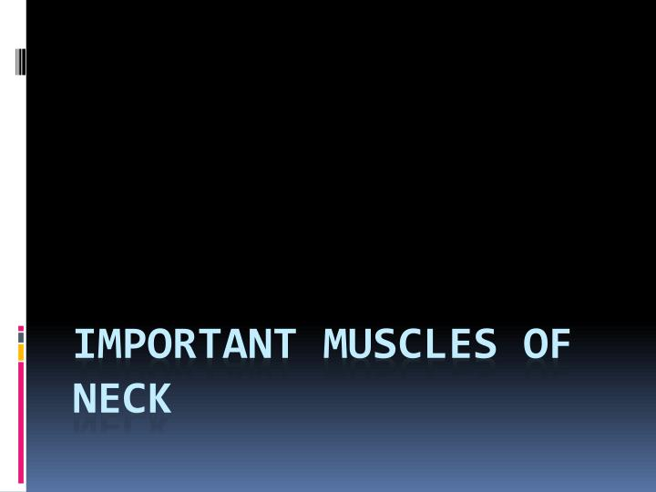 Important Muscles of Neck