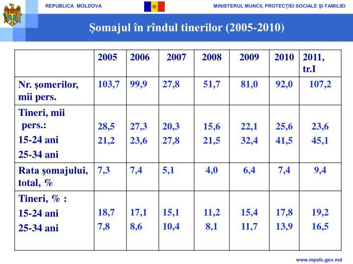 Şomajul în rîndul tinerilor (2005-2010)