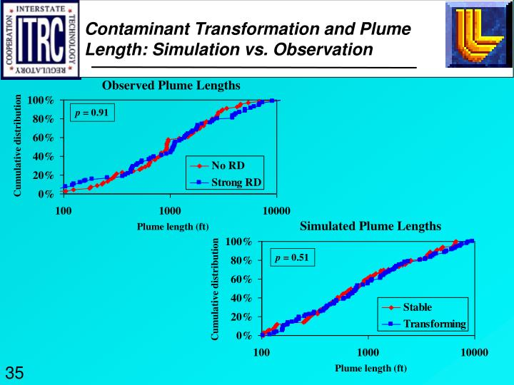 Contaminant Transformation and Plume