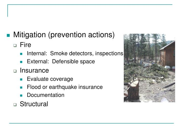Mitigation (prevention actions)