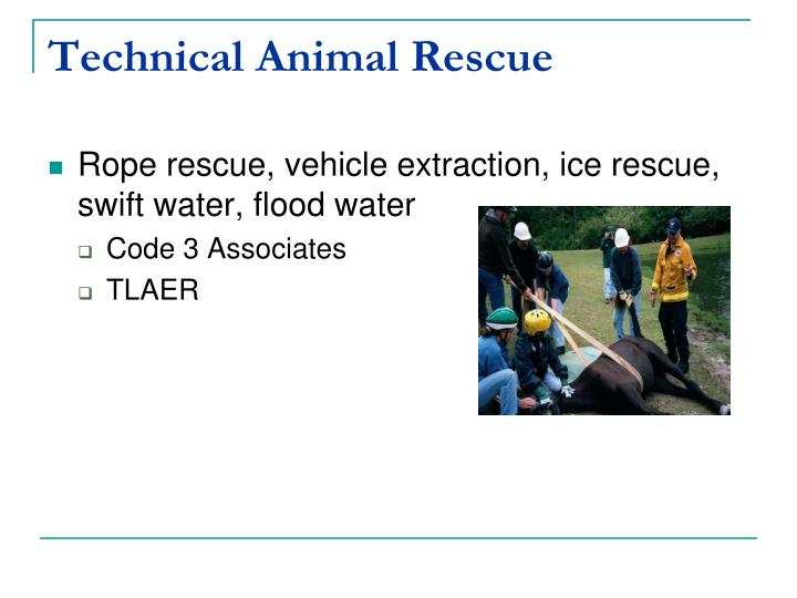 Technical Animal Rescue