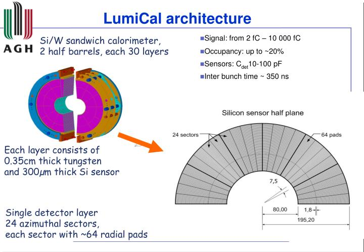 LumiCal architecture
