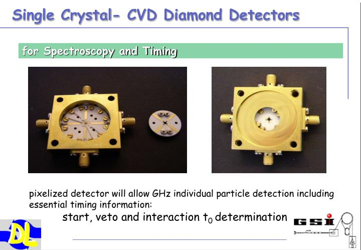 Single Crystal- CVD Diamond Detectors