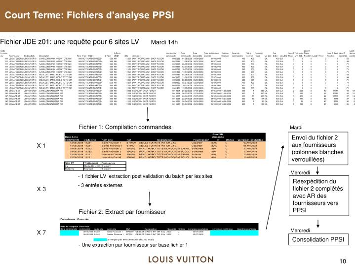 Court Terme: Fichiers d'analyse PPSI