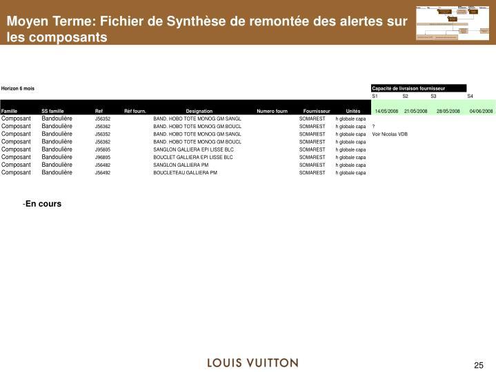 Moyen Terme: Fichier de Synthèse de remontée des alertes sur les composants