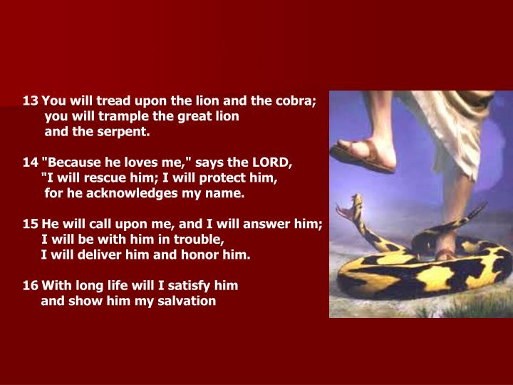 You will tread upon the lion and the cobra;