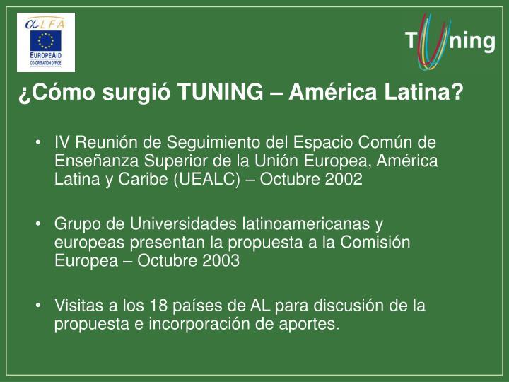 ¿Cómo surgió TUNING – América Latina?