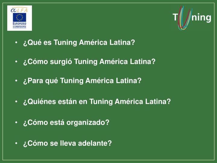 ¿Qué es Tuning América Latina?