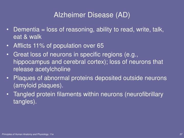 Alzheimer Disease (AD)