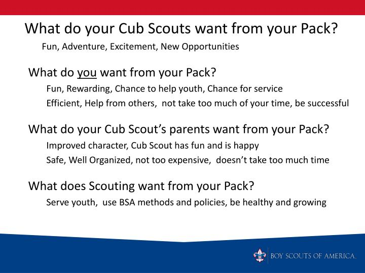 What do your Cub Scouts want from your Pack?