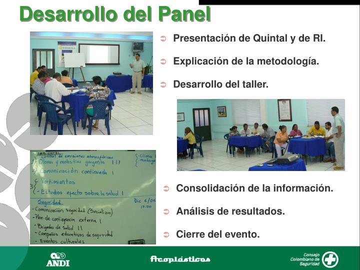 Desarrollo del Panel