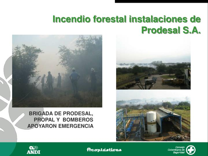 Incendio forestal instalaciones de Prodesal S.A.
