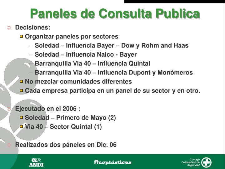Paneles de Consulta Publica