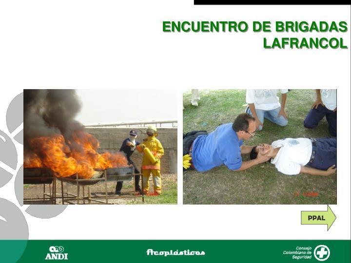 ENCUENTRO DE BRIGADAS